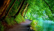 wallpapers-nature-10